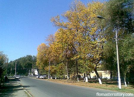 золотая осень в нашем городе