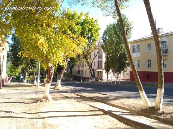 улицы Чирчика