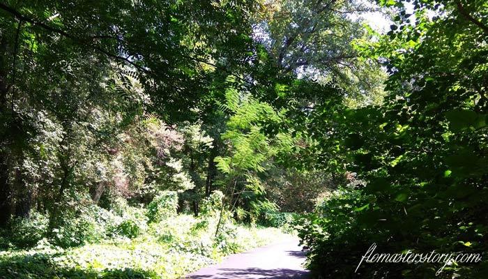 ботанический сад Ташкента