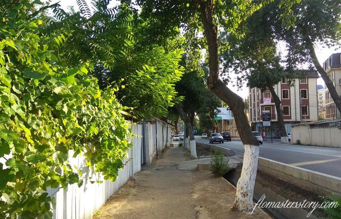 ташкентские улочки