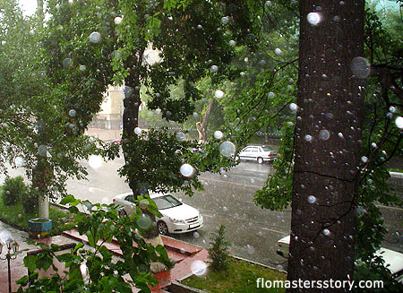 Дождь в городе