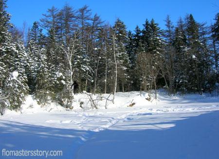 фотография снежного человека