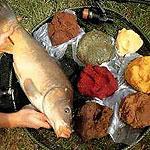 прикорм для рыб