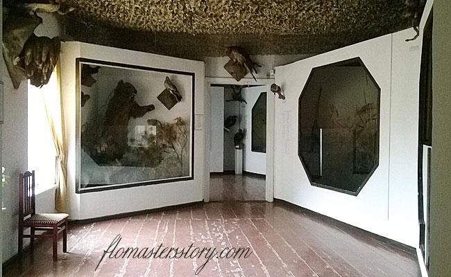 самаркандский областной музей