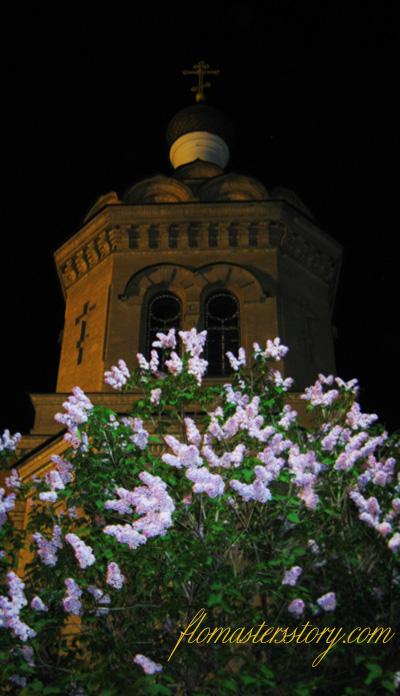 Самарканд церковь