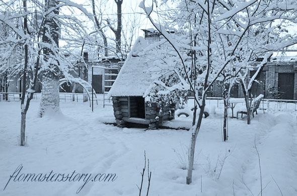 зимние фотографии Ташкента